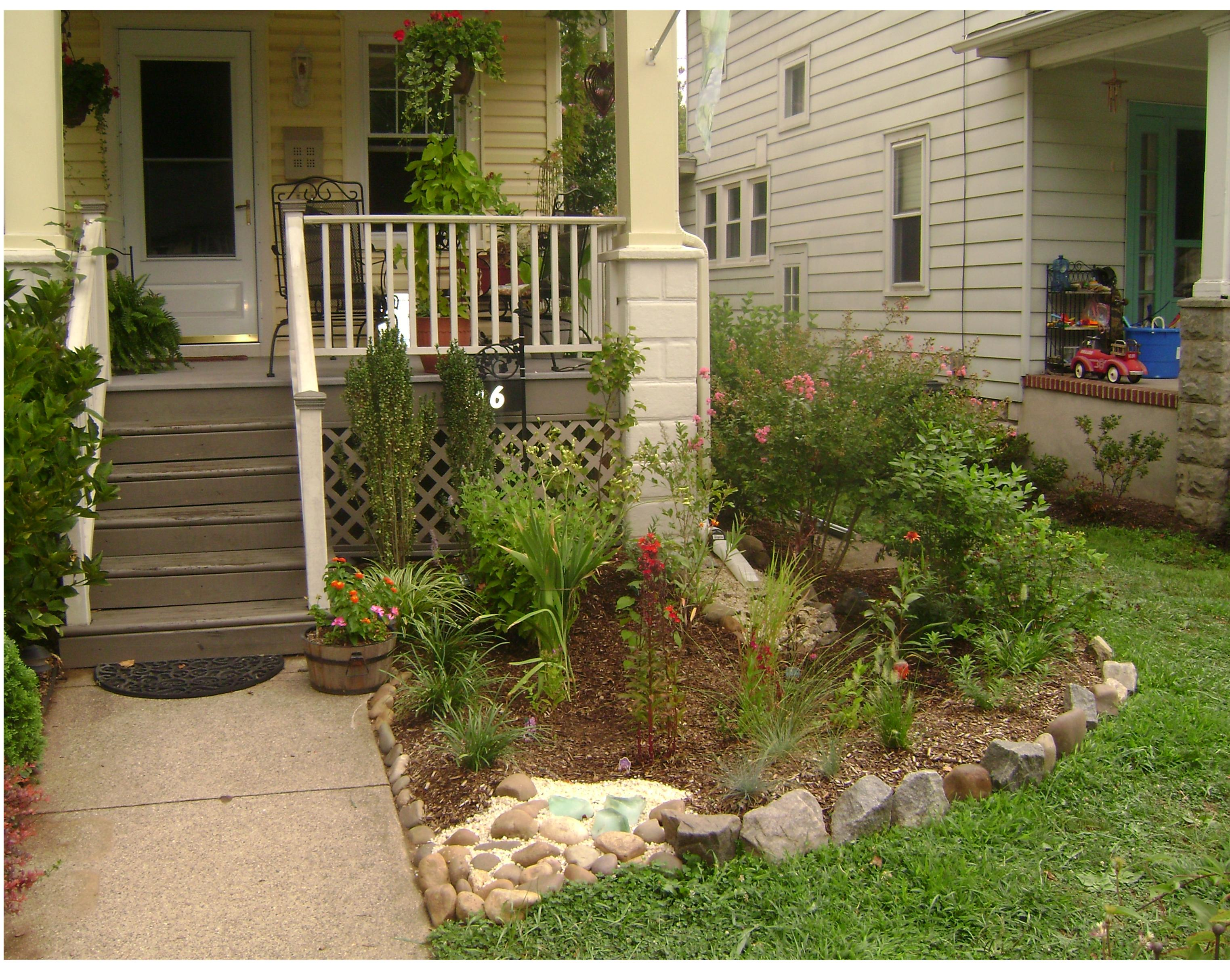 Duke Farms | Rain Gardens: a beautiful way to keep the rain from the ...