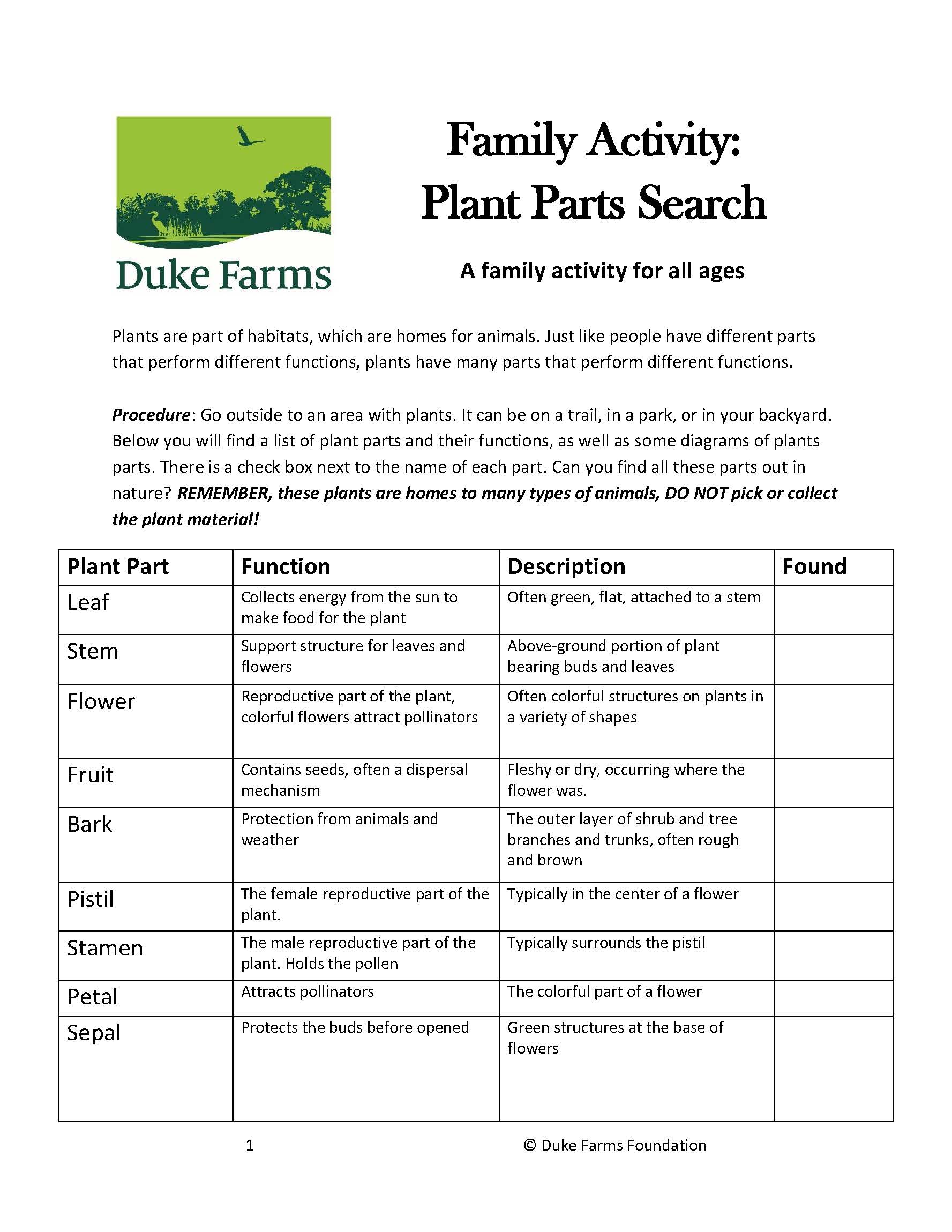 Page one of plant parts search activity